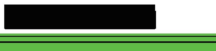 Logo for Kawasaki