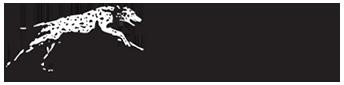 Logo for Coachmen